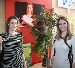 Image for Year 12 Sustainability Expo